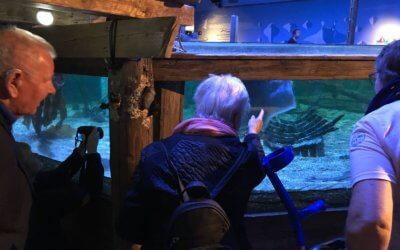 Geslaagde uitjes Sea Life en Polderzoom